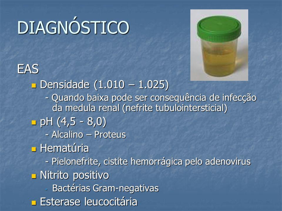DIAGNÓSTICO EAS Densidade (1.010 – 1.025) Densidade (1.010 – 1.025) - Quando baixa pode ser consequência de infecção da medula renal (nefrite tubuloin