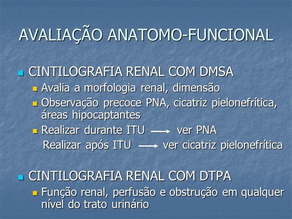 AVALIAÇÃO ANATOMO-FUNCIONAL CINTILOGRAFIA RENAL COM DMSA CINTILOGRAFIA RENAL COM DMSA Avalia a morfologia renal, dimensão Avalia a morfologia renal, d