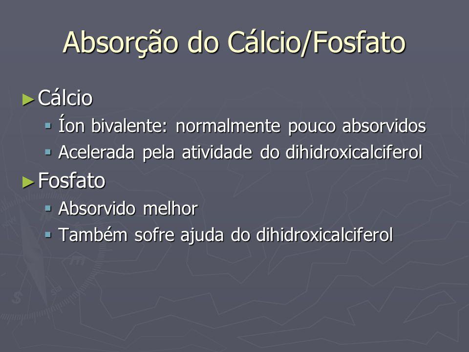Níveis sanguíneos Cálcio no sangue (LEC) Cálcio no sangue (LEC) 2,4mmol/l ou 9,4 mg/dL 2,4mmol/l ou 9,4 mg/dL 50% sobre a forma de Ca ++ 50% sobre a forma de Ca ++ 40% ligados à proteínas 40% ligados à proteínas 10% não ionizado 10% não ionizado Fosfato no sangue (LEC) Fosfato no sangue (LEC) Fosfato dihidrogêniofosfato: H 2 PO 4 - (0,26 mmol/l) Fosfato dihidrogêniofosfato: H 2 PO 4 - (0,26 mmol/l) Fosfato: HPO 4 - - (1,05 mmol/l) Fosfato: HPO 4 - - (1,05 mmol/l) A acidose aumenta o H 2 PO 4 - e diminui o HPO 4 - - A acidose aumenta o H 2 PO 4 - e diminui o HPO 4 - - Concentração total: 3 a 4 mg/dL Concentração total: 3 a 4 mg/dL