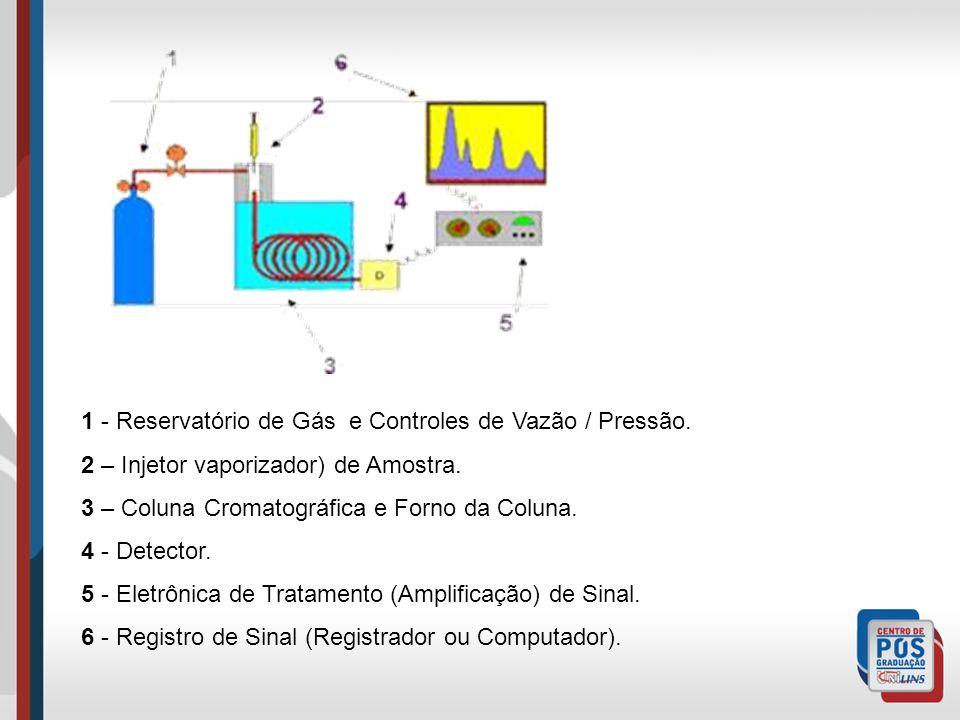 1 - Reservatório de Gás e Controles de Vazão / Pressão. 2 – Injetor vaporizador) de Amostra. 3 – Coluna Cromatográfica e Forno da Coluna. 4 - Detector