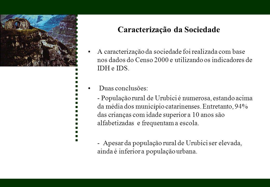 Caracterização da Sociedade A caracterização da sociedade foi realizada com base nos dados do Censo 2000 e utilizando os indicadores de IDH e IDS. Dua