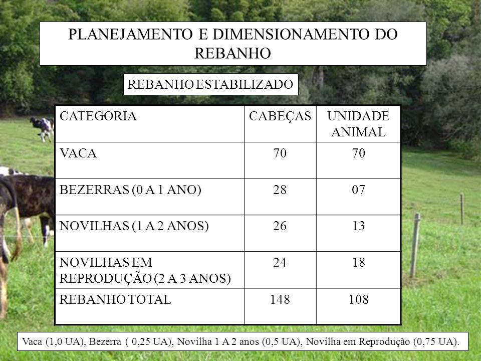 PLANEJAMENTO E DIMENSIONAMENTO DO REBANHO CATEGORIACABEÇASUNIDADE ANIMAL VACA70 BEZERRAS (0 A 1 ANO)2807 NOVILHAS (1 A 2 ANOS)2613 NOVILHAS EM REPRODU