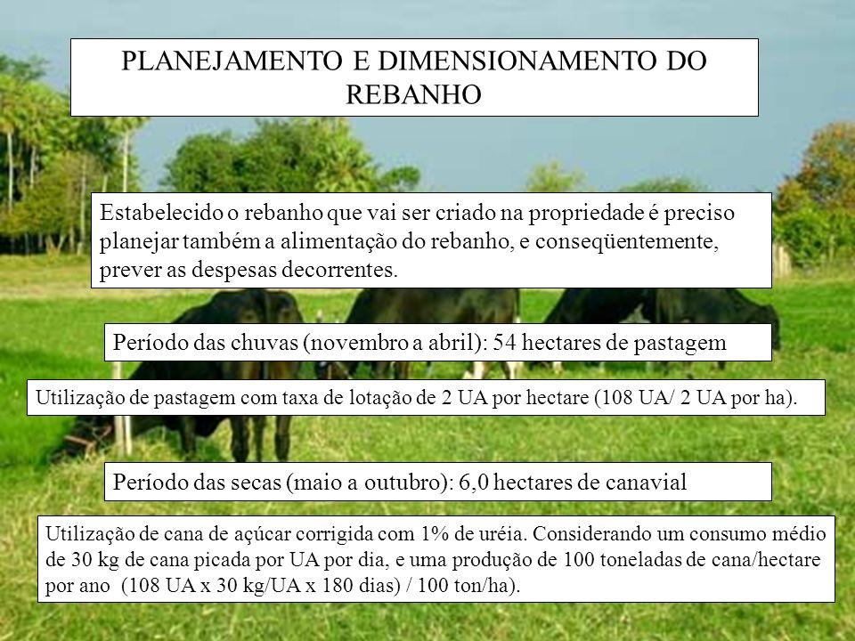PLANEJAMENTO E DIMENSIONAMENTO DO REBANHO Estabelecido o rebanho que vai ser criado na propriedade é preciso planejar também a alimentação do rebanho,