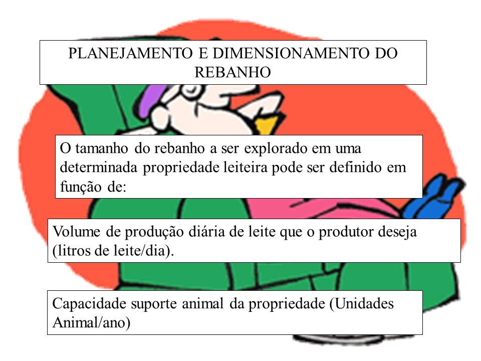 PLANEJAMENTO E DIMENSIONAMENTO DO REBANHO Índices de desempenho zootécnico a serem alcançados: Potencial genético leiteiro das vacas (litros de leite/lactação) Desempenho reprodutivo (taxa de natalidade anual ou intervalo de partos) Porcentagem de vacas em lactação do rebanho = período de lactação / intervalo de partos.