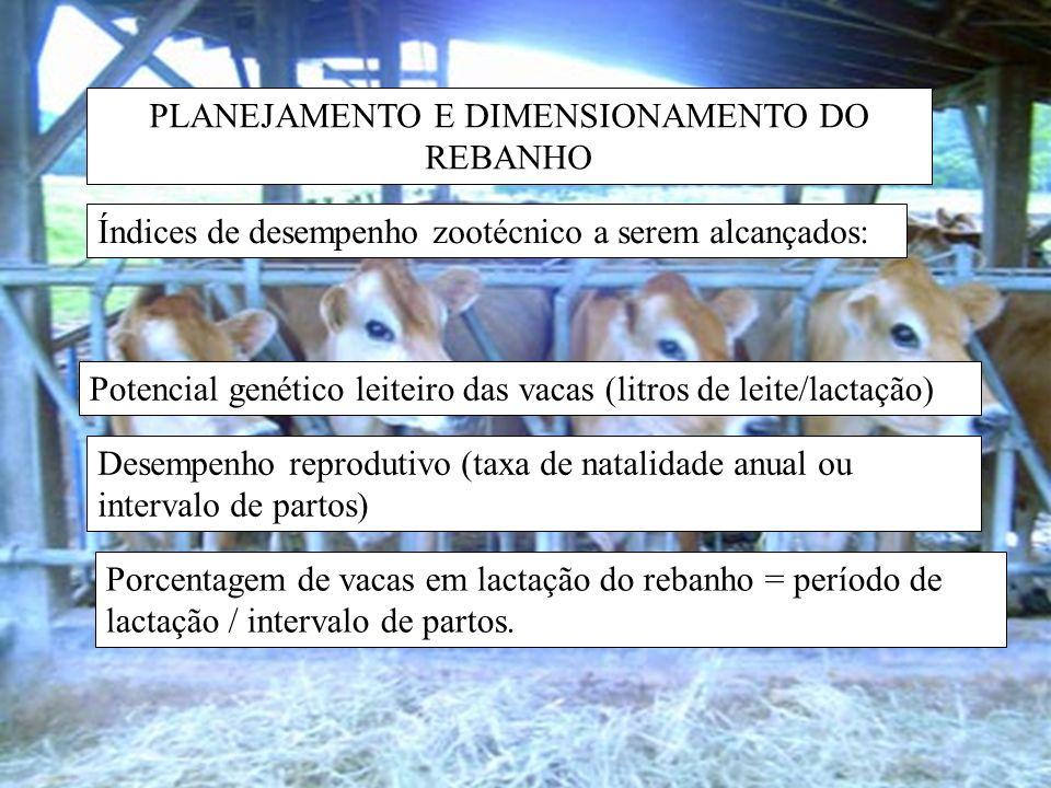 PLANEJAMENTO E DIMENSIONAMENTO DO REBANHO Índices de desempenho zootécnico a serem alcançados.