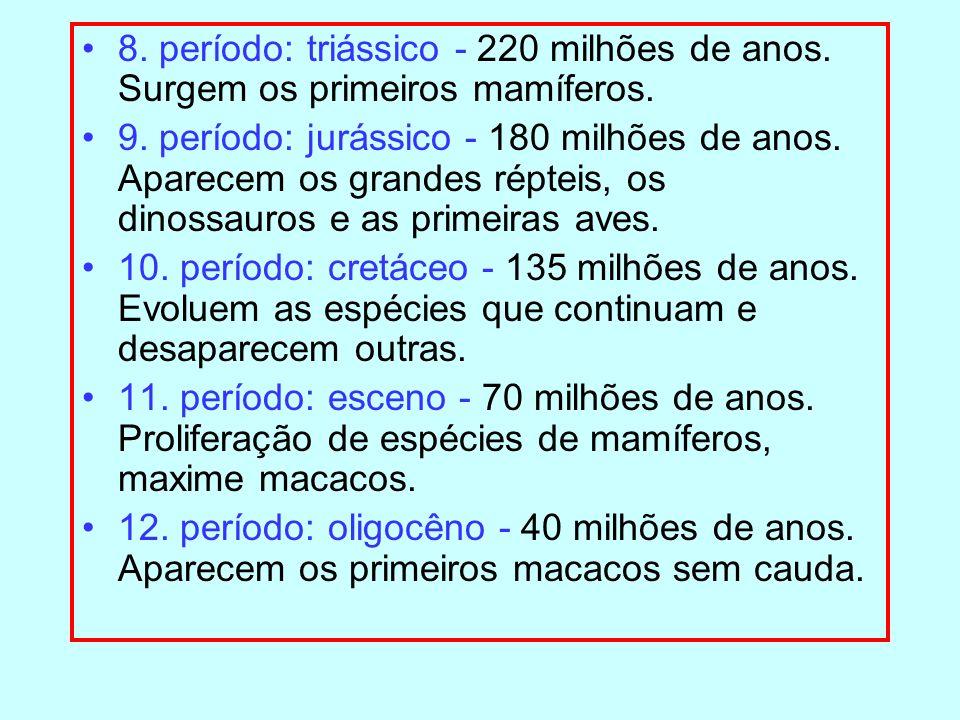 8. período: triássico - 220 milhões de anos. Surgem os primeiros mamíferos. 9. período: jurássico - 180 milhões de anos. Aparecem os grandes répteis,