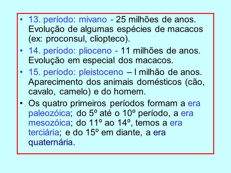13. período: mivano - 25 milhões de anos. Evolução de algumas espécies de macacos (ex: proconsul, cliopteco). 14. período: plioceno - 11 milhões de an