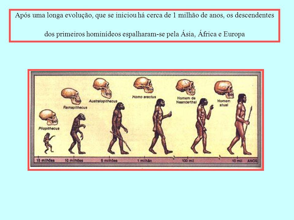 Após uma longa evolução, que se iniciou há cerca de 1 milhão de anos, os descendentes dos primeiros hominídeos espalharam-se pela Ásia, África e Europ