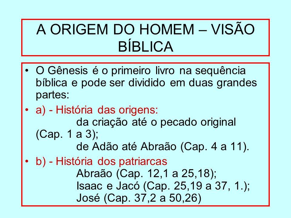 A ORIGEM DO HOMEM – VISÃO BÍBLICA O Gênesis é o primeiro livro na sequência bíblica e pode ser dividido em duas grandes partes: a) - História das orig