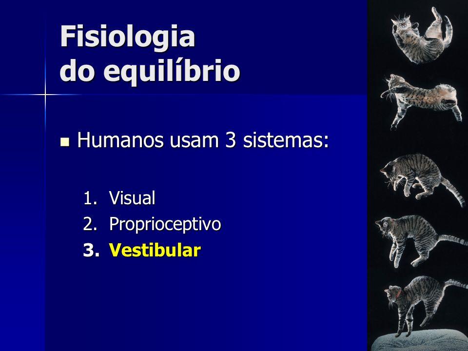 Fisiologia do equilíbrio Humanos usam 3 sistemas: Humanos usam 3 sistemas: 1.Visual 2.Proprioceptivo 3.Vestibular