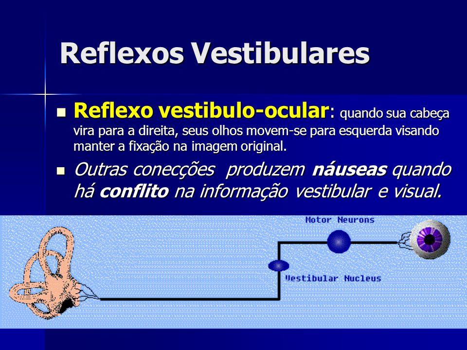 Reflexos Vestibulares Reflexo vestibulo-ocular : quando sua cabeça vira para a direita, seus olhos movem-se para esquerda visando manter a fixação na