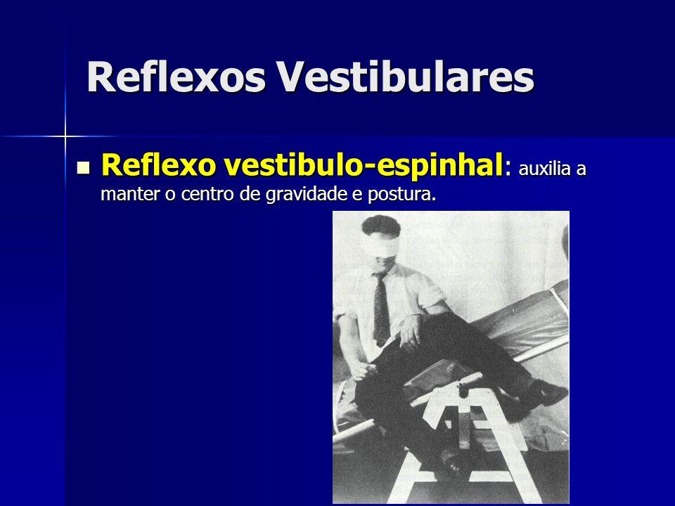 Reflexos Vestibulares Reflexo vestibulo-espinhal : auxilia a manter o centro de gravidade e postura. Reflexo vestibulo-espinhal : auxilia a manter o c