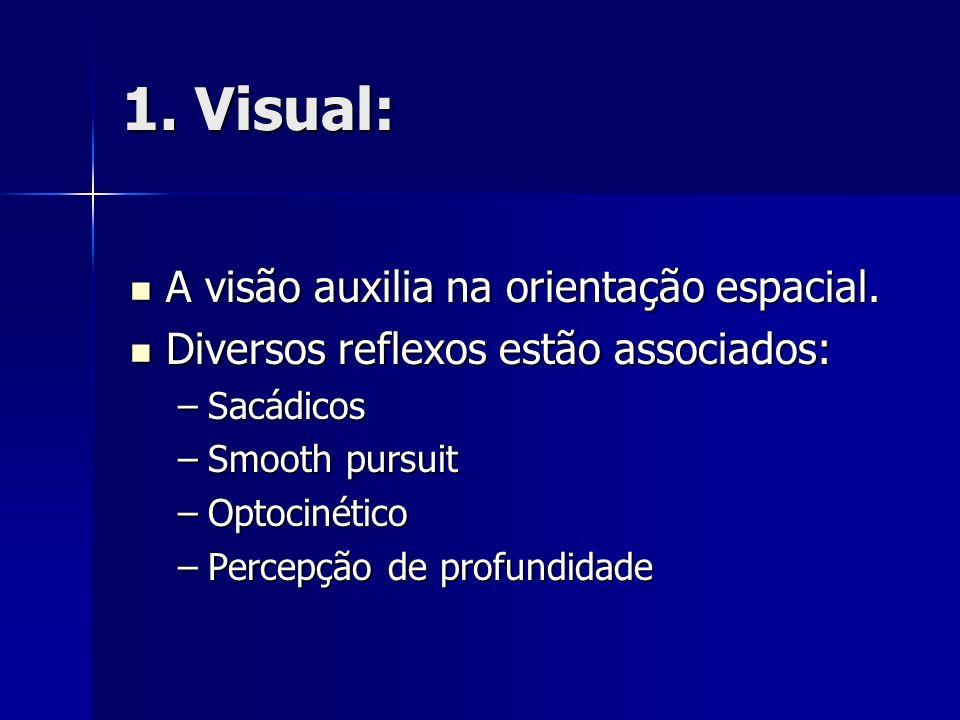 1. Visual: A visão auxilia na orientação espacial. A visão auxilia na orientação espacial. Diversos reflexos estão associados: Diversos reflexos estão