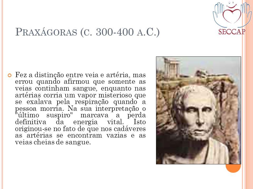 P RAXÁGORAS ( C. 300-400 A.C.) Fez a distinção entre veia e artéria, mas errou quando afirmou que somente as veias continham sangue, enquanto nas arté