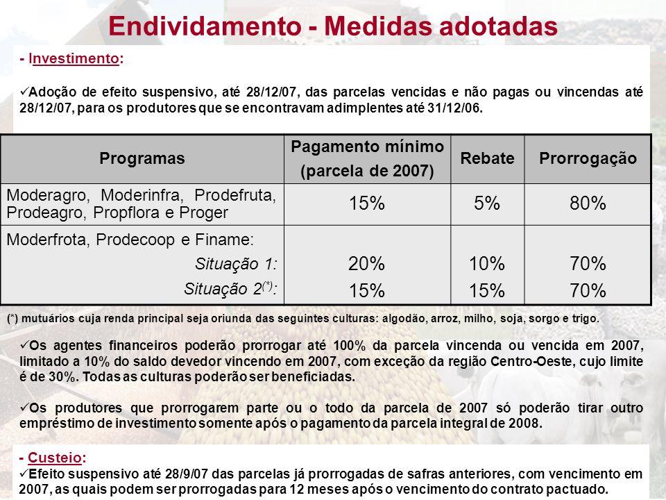 Endividamento - Medidas adotadas - Investimento: Adoção de efeito suspensivo, até 28/12/07, das parcelas vencidas e não pagas ou vincendas até 28/12/0