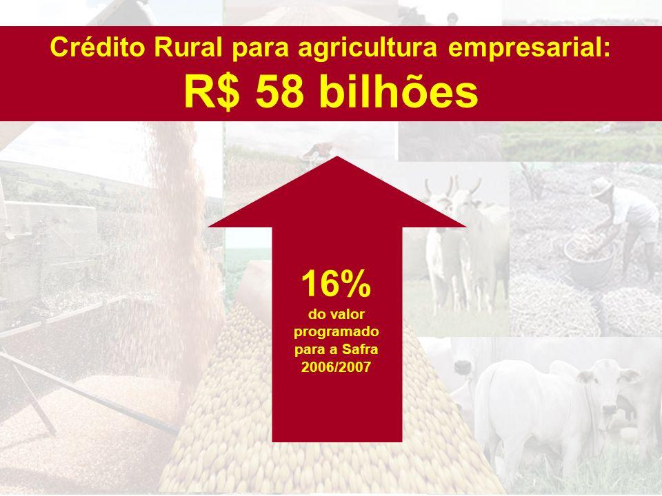 Crédito Rural para agricultura empresarial: R$ 58 bilhões 16% do valor programado para a Safra 2006/2007