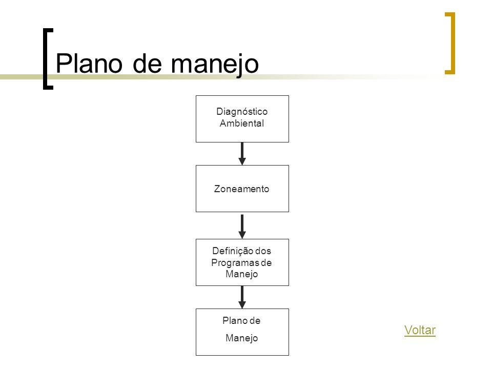 Plano de manejo Diagnóstico Ambiental Zoneamento Definição dos Programas de Manejo Plano de Manejo Voltar