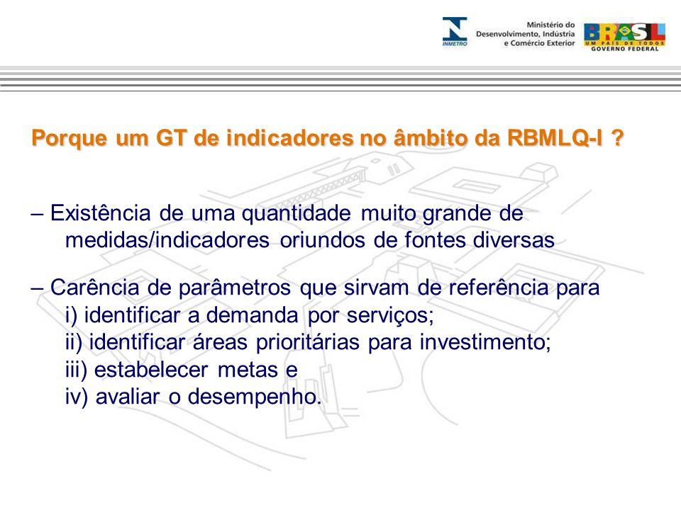 Porque um GT de indicadores no âmbito da RBMLQ-I ? – Existência de uma quantidade muito grande de medidas/indicadores oriundos de fontes diversas – Ca