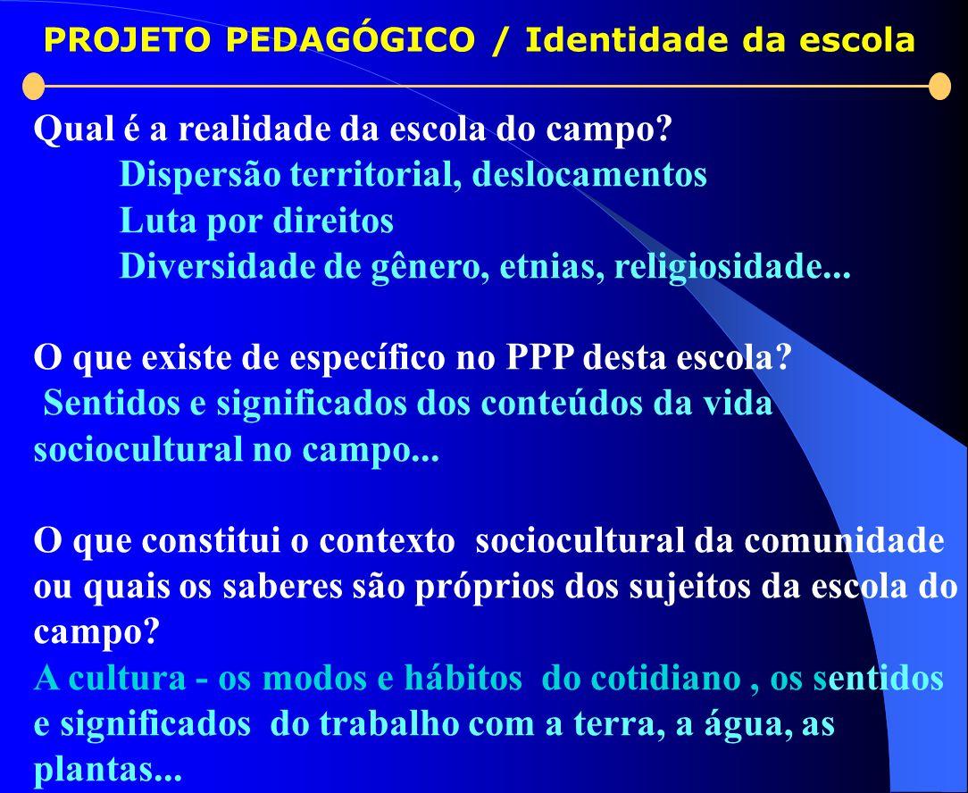 PROJETO PEDAGÓGICO / Identidade da escola Qual é a realidade da escola do campo? Dispersão territorial, deslocamentos Luta por direitos Diversidade de