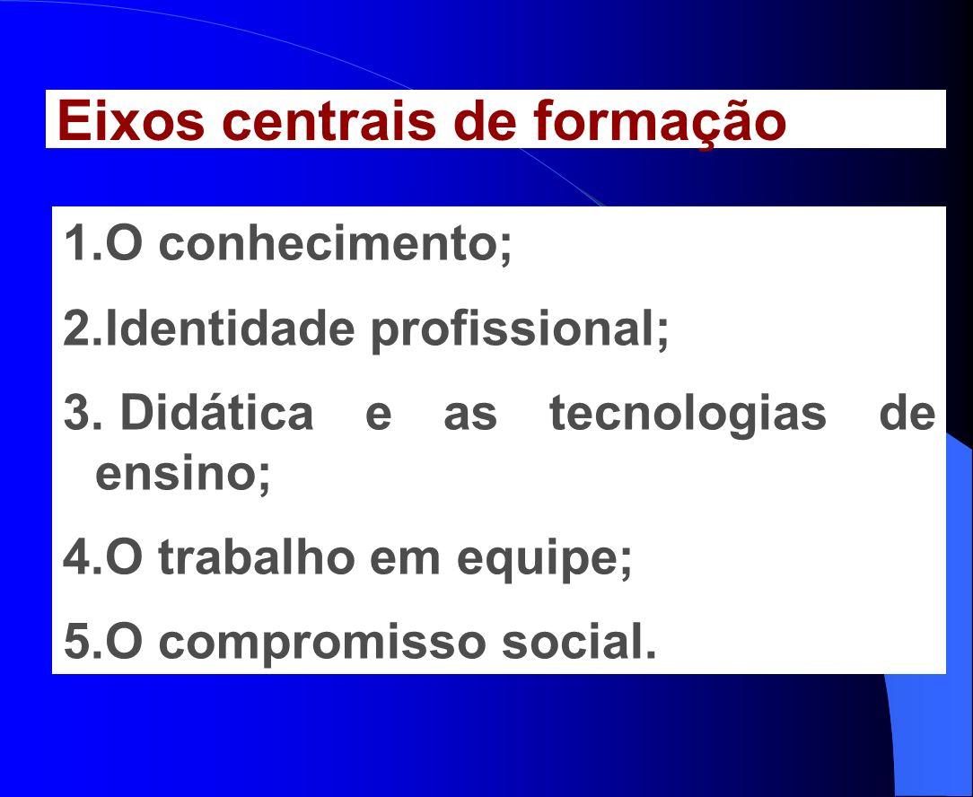 1.O conhecimento; 2.Identidade profissional; 3. Didática e as tecnologias de ensino; 4.O trabalho em equipe; 5.O compromisso social. Eixos centrais de