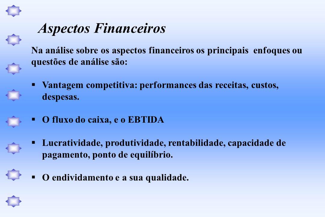Na análise sobre os aspectos financeiros os principais enfoques ou questões de análise são: Vantagem competitiva: performances das receitas, custos, d