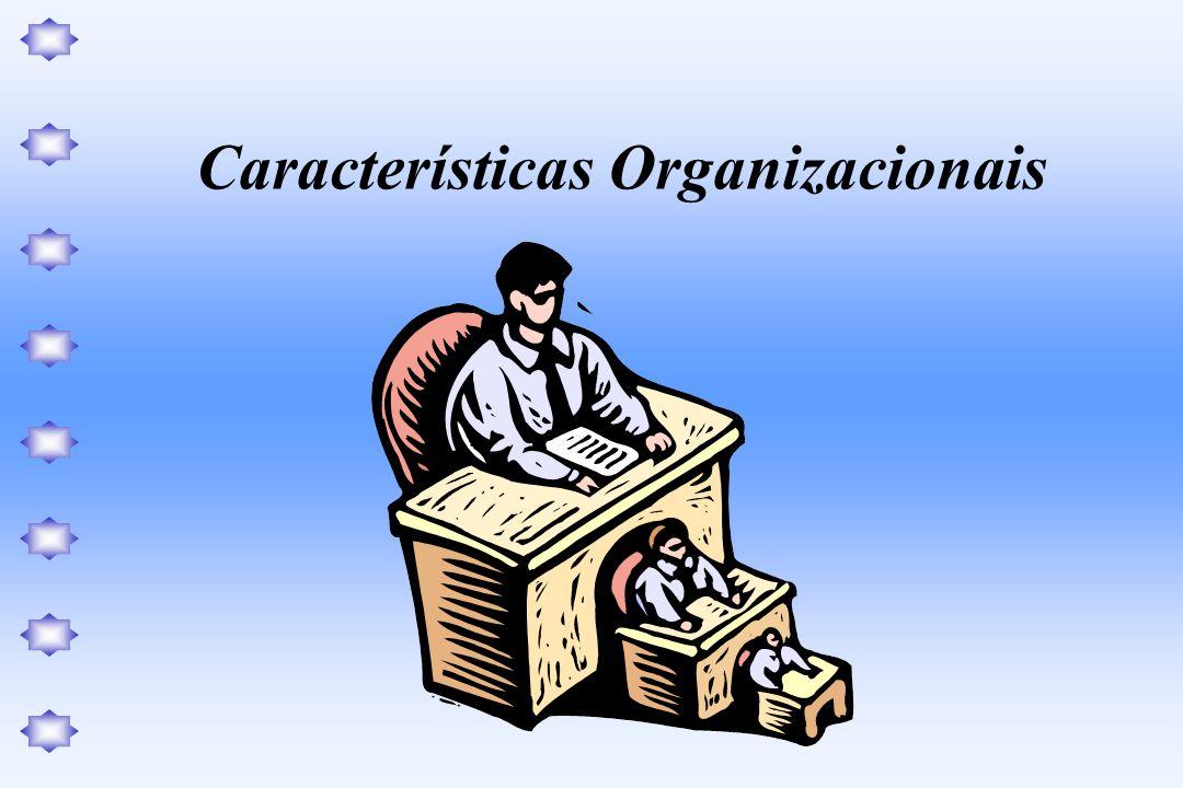 Na análise das Características Organizacionais, os principais enfoques ou questões de análise, são: A estrutura organizacional, distribuição do poder e da autoridade, a delegação.
