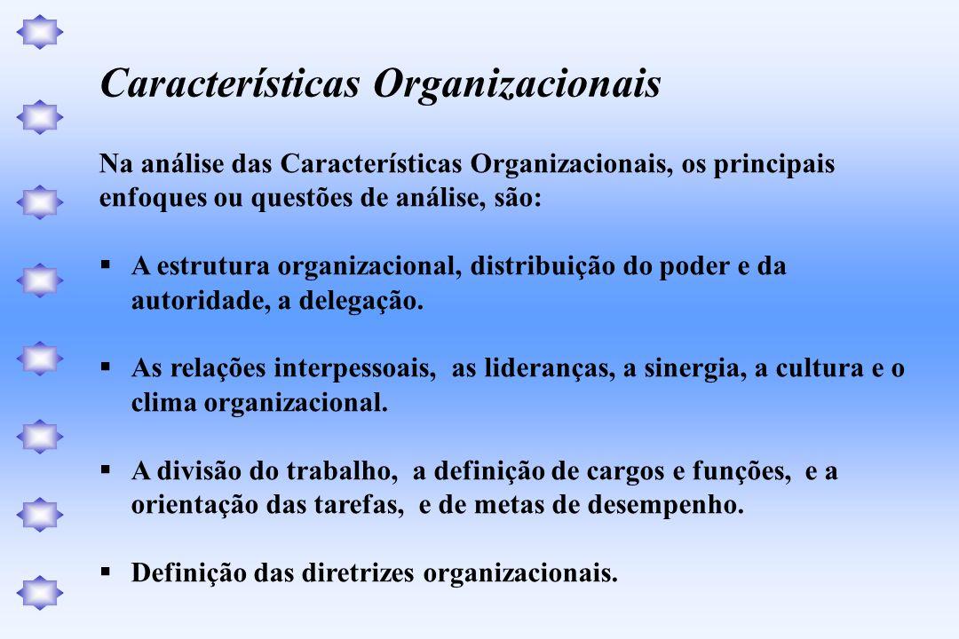 Na análise das Características Organizacionais, os principais enfoques ou questões de análise, são: A estrutura organizacional, distribuição do poder