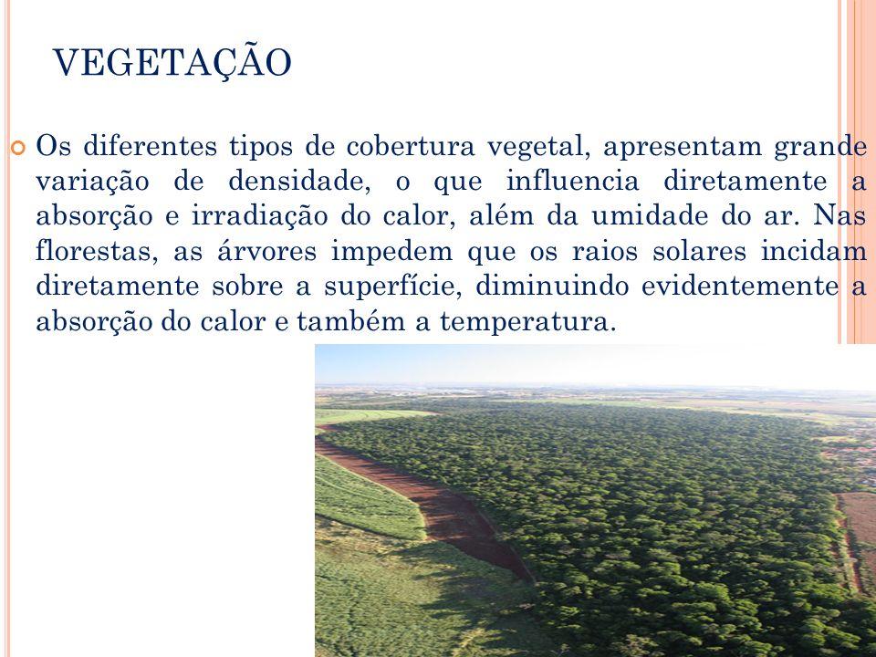 VEGETAÇÃO Os diferentes tipos de cobertura vegetal, apresentam grande variação de densidade, o que influencia diretamente a absorção e irradiação do c