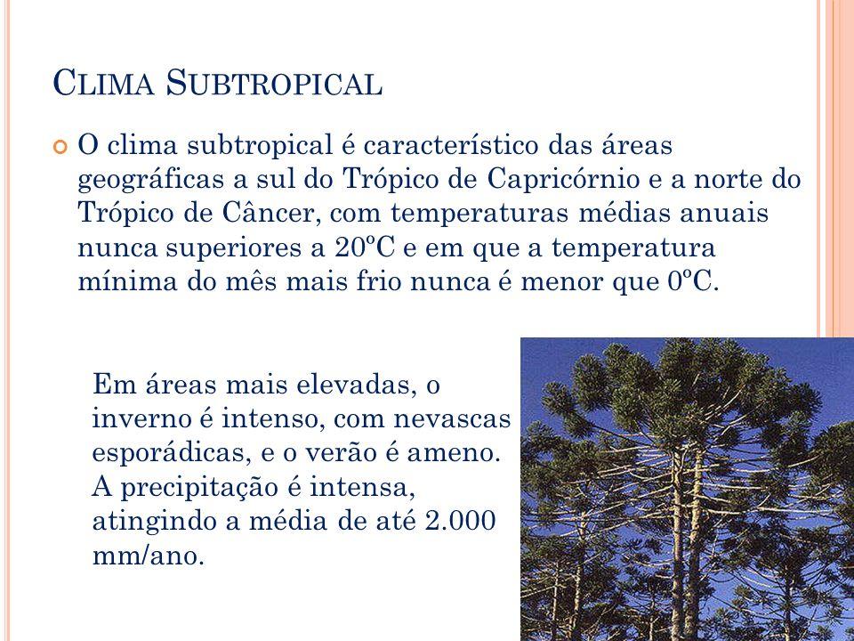 C LIMA S UBTROPICAL O clima subtropical é característico das áreas geográficas a sul do Trópico de Capricórnio e a norte do Trópico de Câncer, com tem