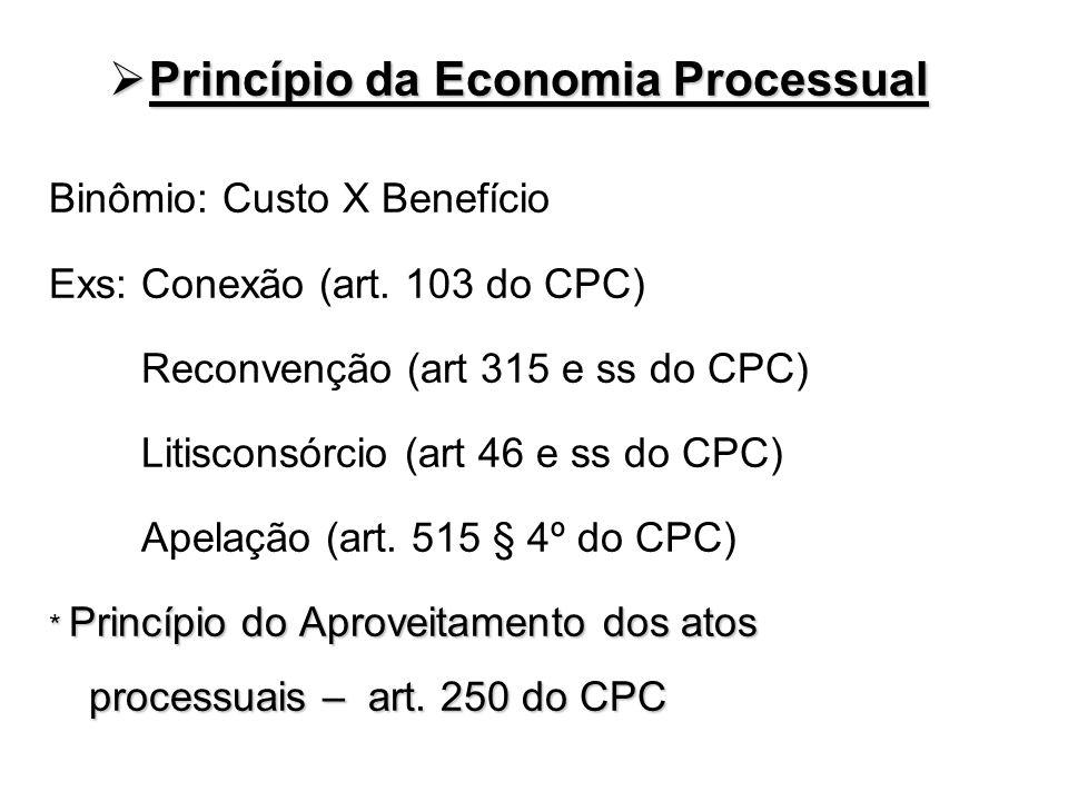 Princípio da Economia Processual Princípio da Economia Processual Binômio: Custo X Benefício Exs: Conexão (art. 103 do CPC) Reconvenção (art 315 e ss