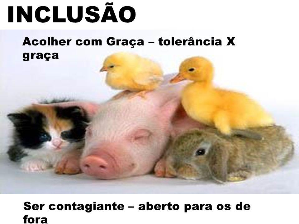 Click to edit Master subtitle style INCLUSÃO Acolher com Graça – tolerância X graça Ser contagiante – aberto para os de fora
