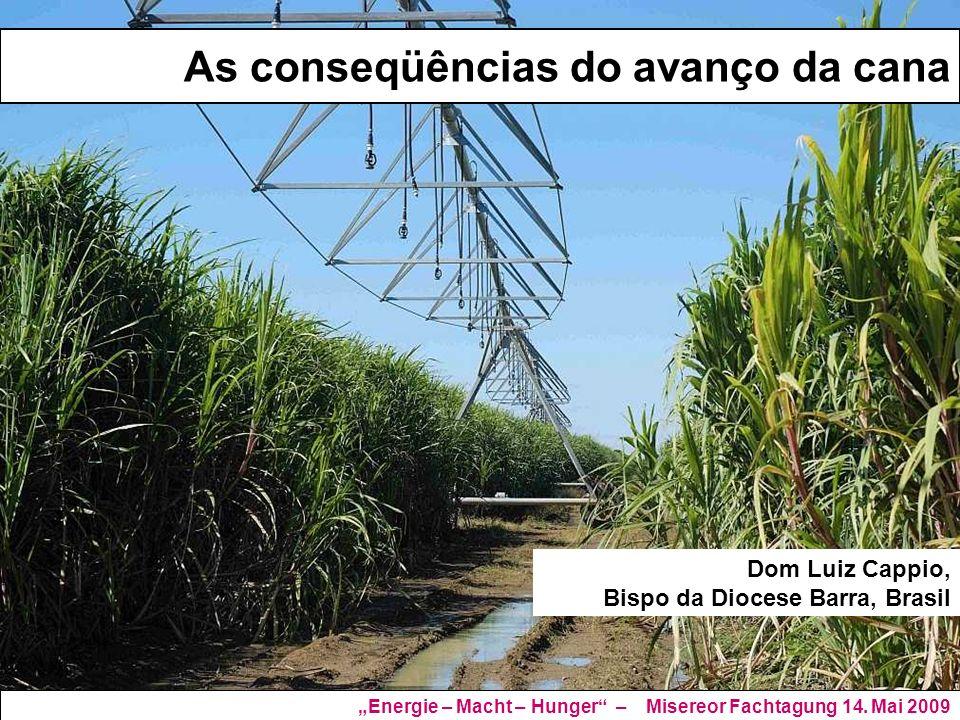 As conseqüências do avanço da cana Dom Luiz Cappio, Bispo da Diocese Barra, Brasil Energie – Macht – Hunger – Misereor Fachtagung 14. Mai 2009