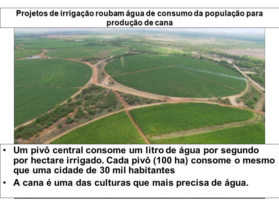 Um pivô central consome um litro de água por segundo por hectare irrigado. Cada pivô (100 ha) consome o mesmo que uma cidade de 30 mil habitantes A ca