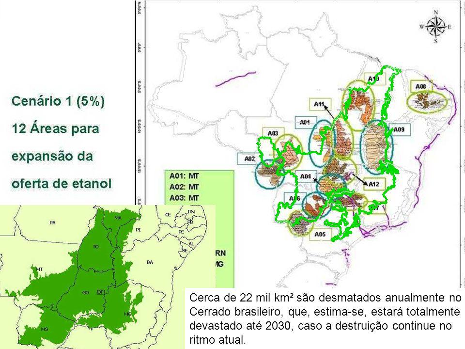 Cerca de 22 mil km² são desmatados anualmente no Cerrado brasileiro, que, estima-se, estará totalmente devastado até 2030, caso a destruição continue