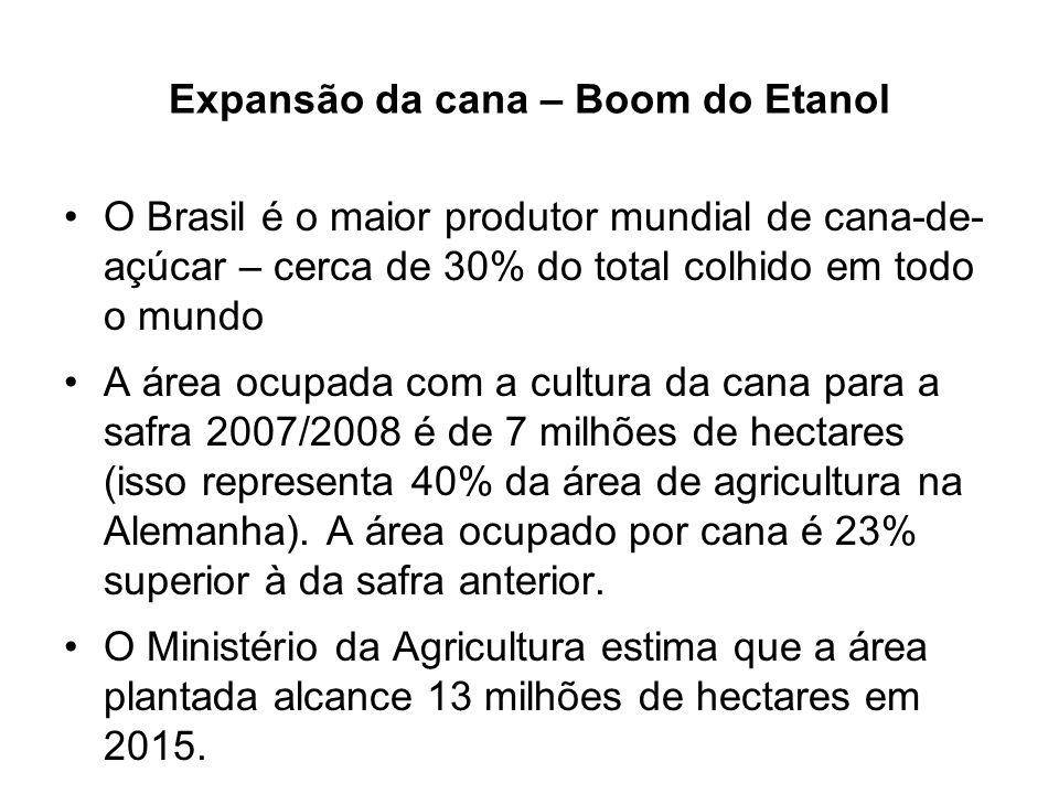 Expansão da cana – Boom do Etanol O Brasil é o maior produtor mundial de cana-de- açúcar – cerca de 30% do total colhido em todo o mundo A área ocupad