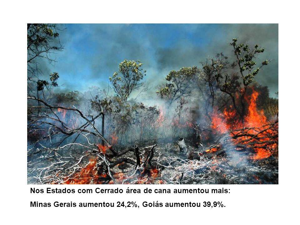 Nos Estados com Cerrado área de cana aumentou mais: Minas Gerais aumentou 24,2%, Goiás aumentou 39,9%.