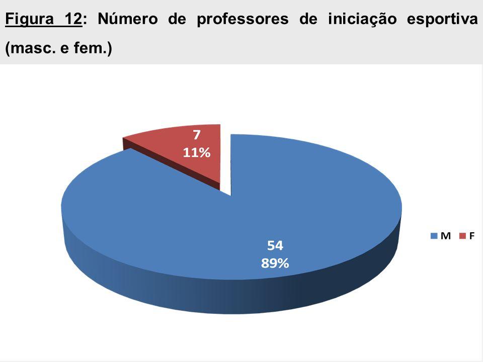 Figura 12: Número de professores de iniciação esportiva (masc. e fem.)