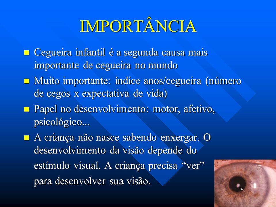 IMPORTÂNCIA n Cegueira infantil é a segunda causa mais importante de cegueira no mundo n Muito importante: índice anos/cegueira (número de cegos x exp