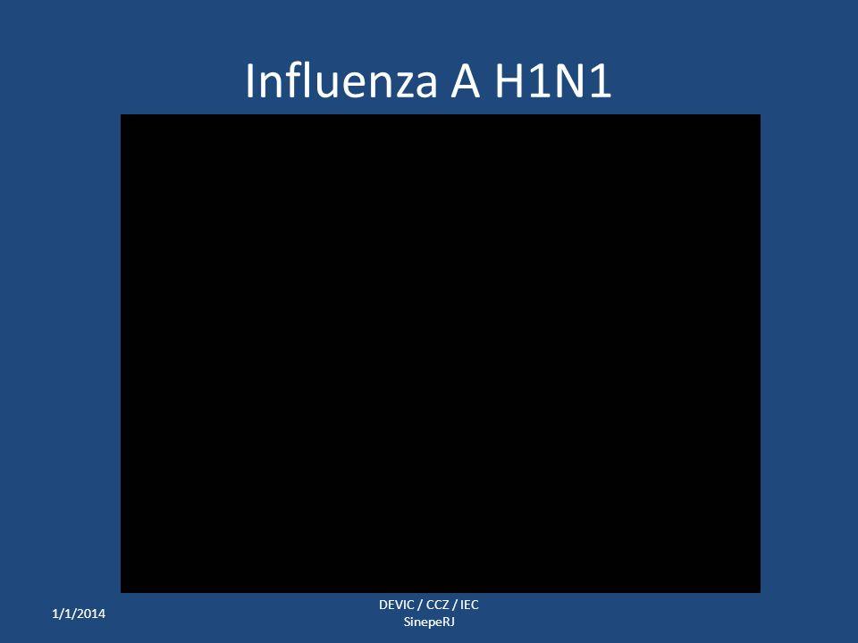 Influenza A H1N1 1/1/2014 DEVIC / CCZ / IEC SinepeRJ