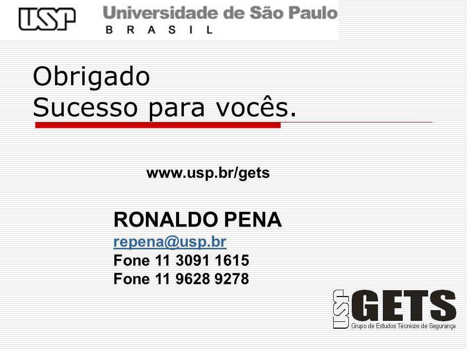 Obrigado Sucesso para vocês. www.usp.br/gets RONALDO PENA repena@usp.br Fone 11 3091 1615 Fone 11 9628 9278