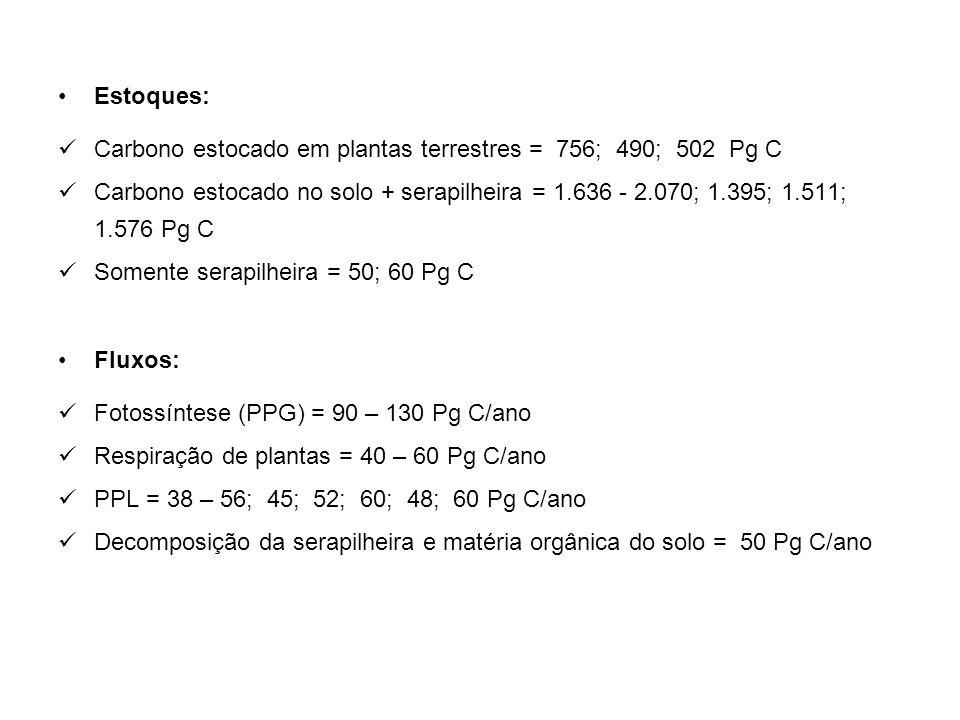Estoques: Carbono estocado em plantas terrestres = 756; 490; 502 Pg C Carbono estocado no solo + serapilheira = 1.636 - 2.070; 1.395; 1.511; 1.576 Pg C Somente serapilheira = 50; 60 Pg C Fluxos: Fotossíntese (PPG) = 90 – 130 Pg C/ano Respiração de plantas = 40 – 60 Pg C/ano PPL = 38 – 56; 45; 52; 60; 48; 60 Pg C/ano Decomposição da serapilheira e matéria orgânica do solo = 50 Pg C/ano