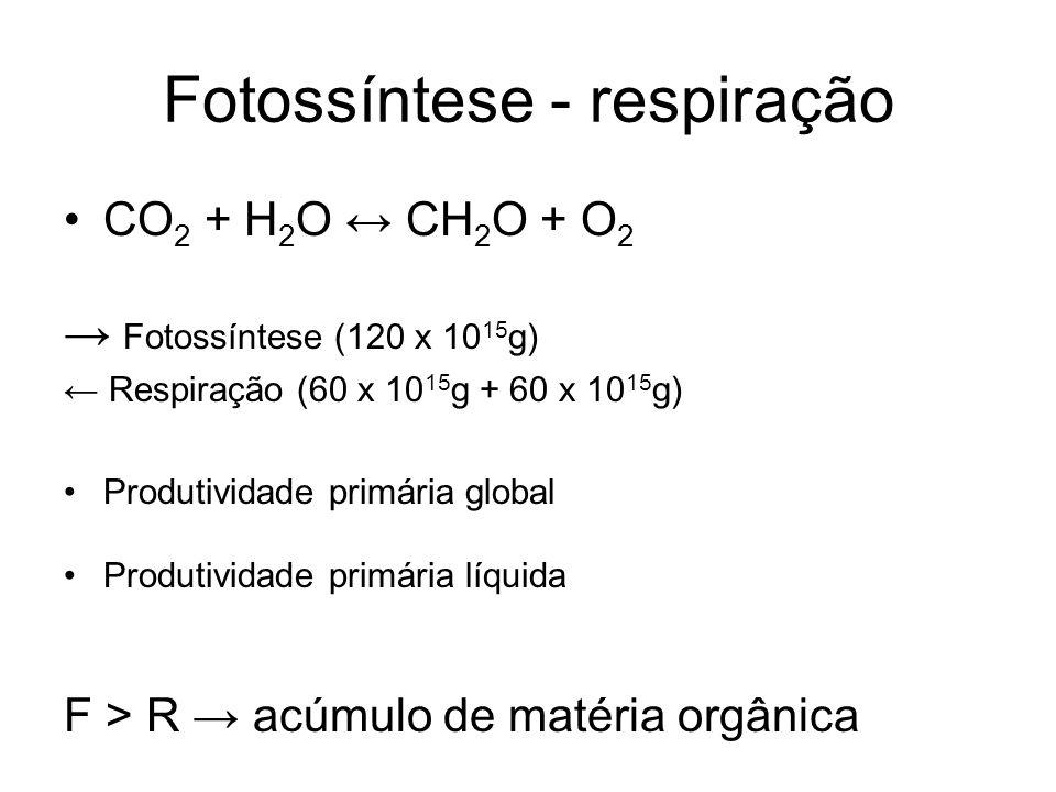 Fotossíntese - respiração CO 2 + H 2 O CH 2 O + O 2 Fotossíntese (120 x 10 15 g) Respiração (60 x 10 15 g + 60 x 10 15 g) Produtividade primária global Produtividade primária líquida F > R acúmulo de matéria orgânica