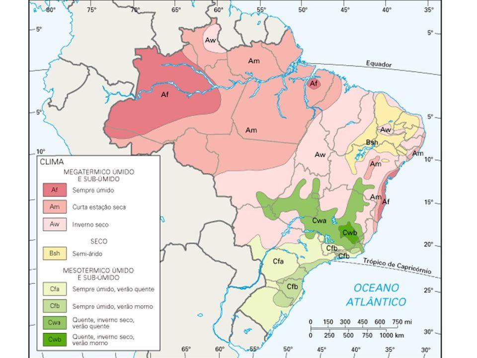 Clima da região Sul e do Paraná Cfb - Clima temperado propriamente dito; temperatura média no mês mais frio abaixo de 18°C (mesotérmico), com verões f