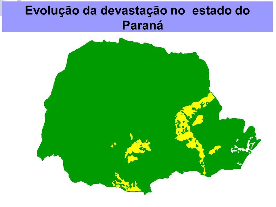 Paraná: predomínio da Mata com Araucárias (95% devastada) nas áreas planálticas, vegetação de Campos (pampas ou coxilhas) nos chamados Campos Gerais e