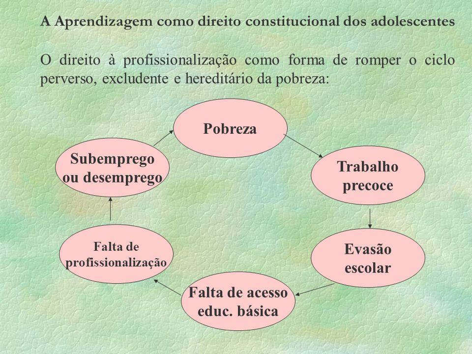 A Aprendizagem como direito constitucional dos adolescentes O direito à profissionalização como forma de romper o ciclo perverso, excludente e heredit