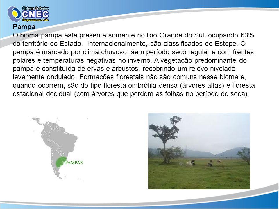 Pampa O bioma pampa está presente somente no Rio Grande do Sul, ocupando 63% do território do Estado. Internacionalmente, são classificados de Estepe.