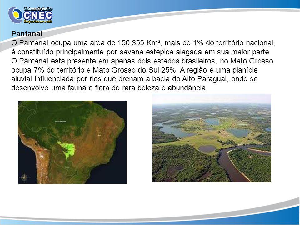 Pantanal O Pantanal ocupa uma área de 150.355 Km², mais de 1% do território nacional, é constituído principalmente por savana estépica alagada em sua