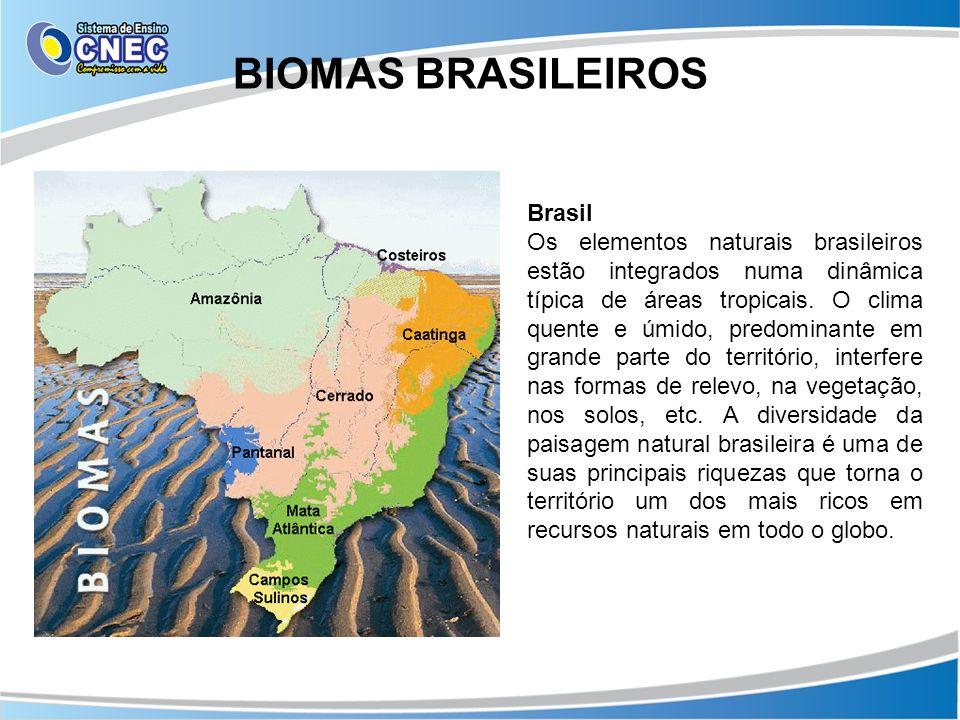 BIOMAS BRASILEIROS Brasil Os elementos naturais brasileiros estão integrados numa dinâmica típica de áreas tropicais. O clima quente e úmido, predomin