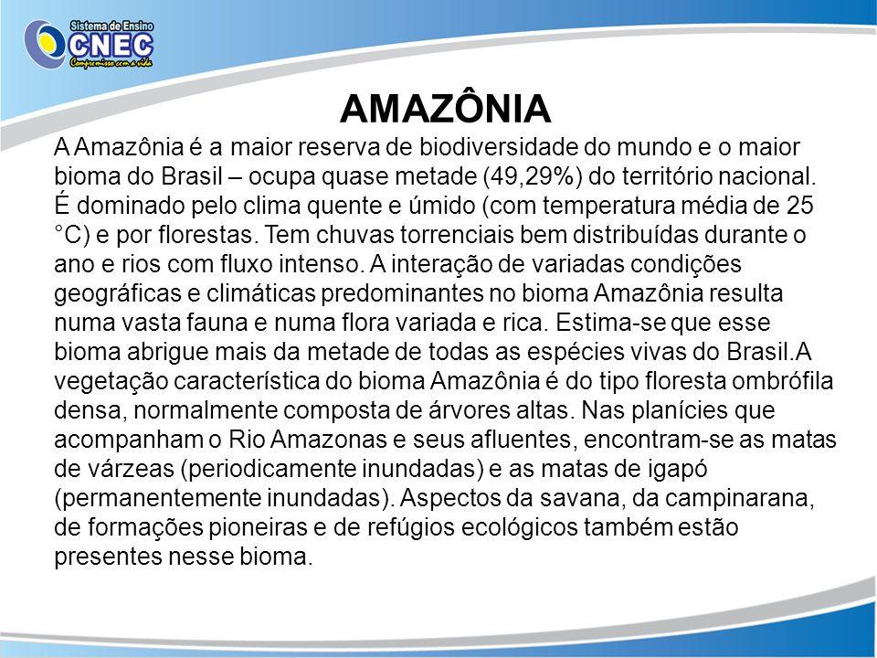 AMAZÔNIA A Amazônia é a maior reserva de biodiversidade do mundo e o maior bioma do Brasil – ocupa quase metade (49,29%) do território nacional. É dom