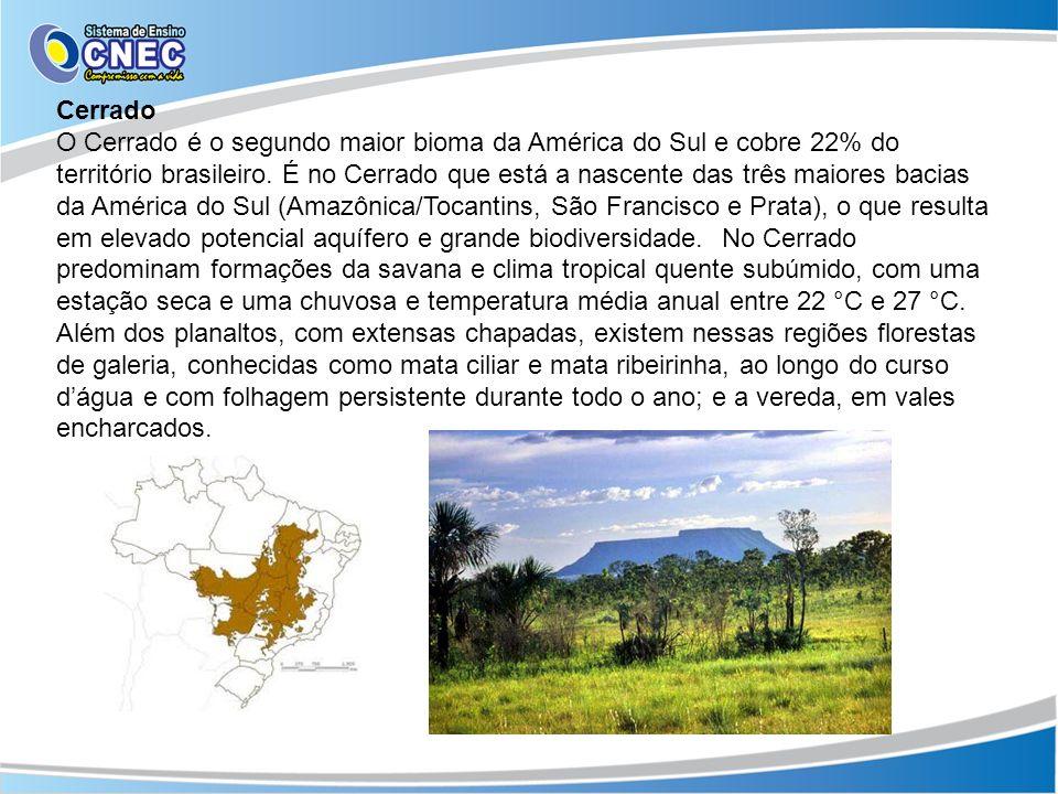 Cerrado O Cerrado é o segundo maior bioma da América do Sul e cobre 22% do território brasileiro. É no Cerrado que está a nascente das três maiores ba